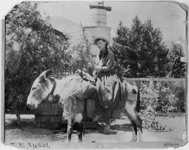 Lou Henry Hoover on a donkey with a gun