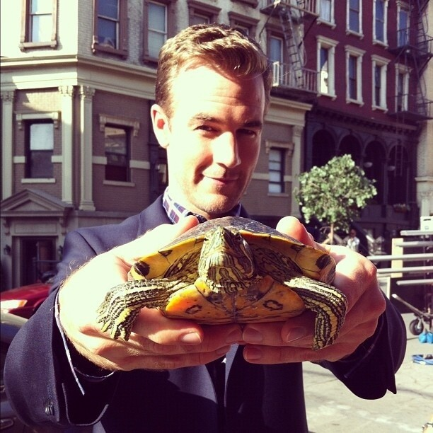 James Van Der Beek Holding a Turtle