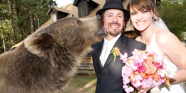 Brutus was even best bear at Casey's wedding!