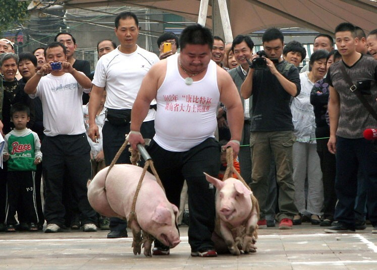 Annual Pig Carrying Competition