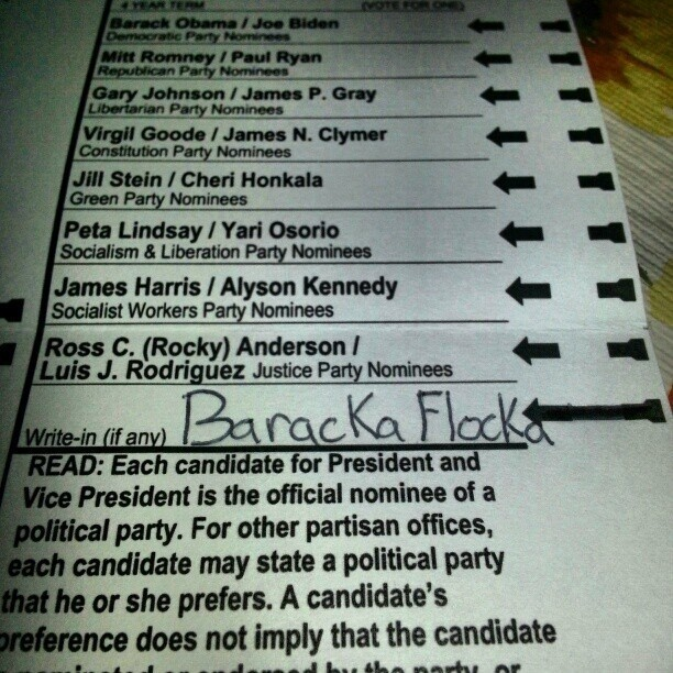 Silliest Write-In Candidates On Election Day