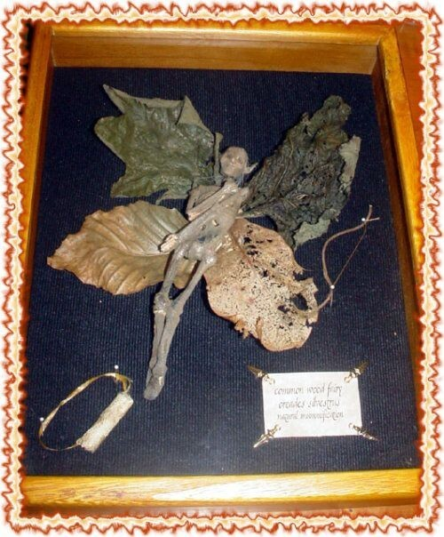 Mummified Fairy