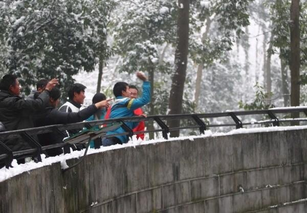 Stupid People in Chinese Zoo