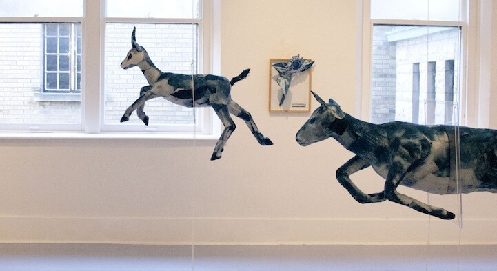 Animals Burst Through Gallery Walls and Glass Containers