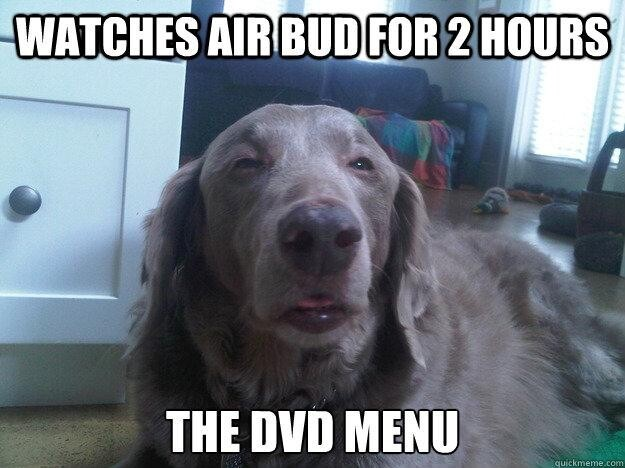 Best of the Really High Dog Meme