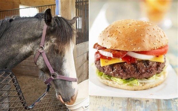 HORSE MEAT Found In Beef All Over Europe!? Everyone Is Outraged.