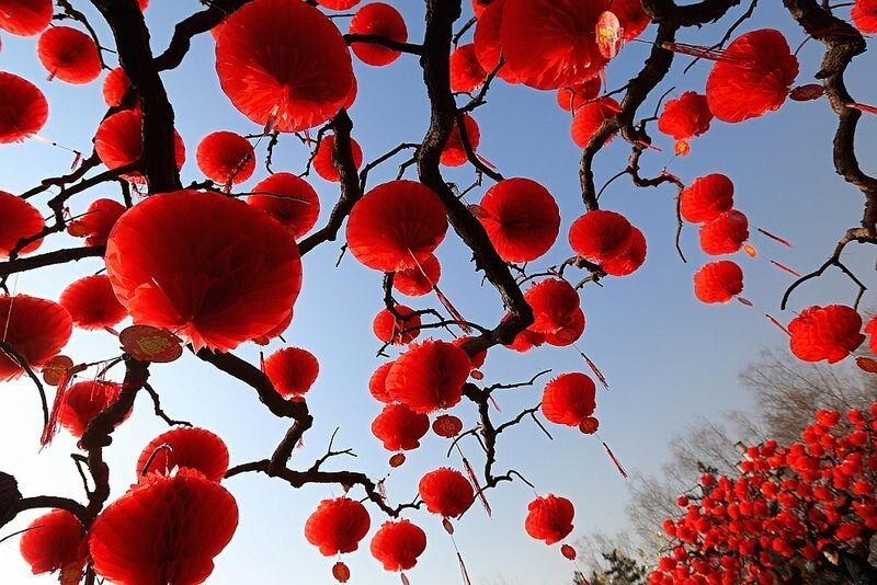 Chinese Lunar New Year 2013
