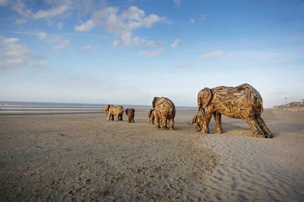 Superb Elephant Sculptures Made From Driftwood
