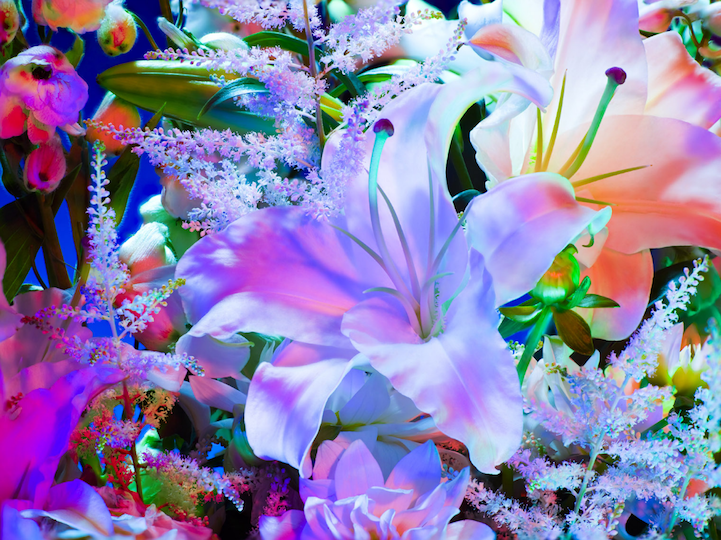 Electric Blossom: An Ethereal Distortion of Nature