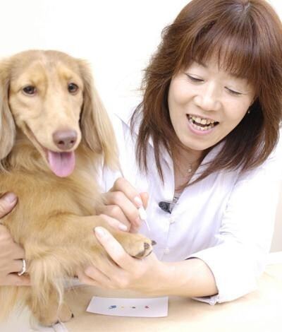 Manicure Your Dog! It's Fun!