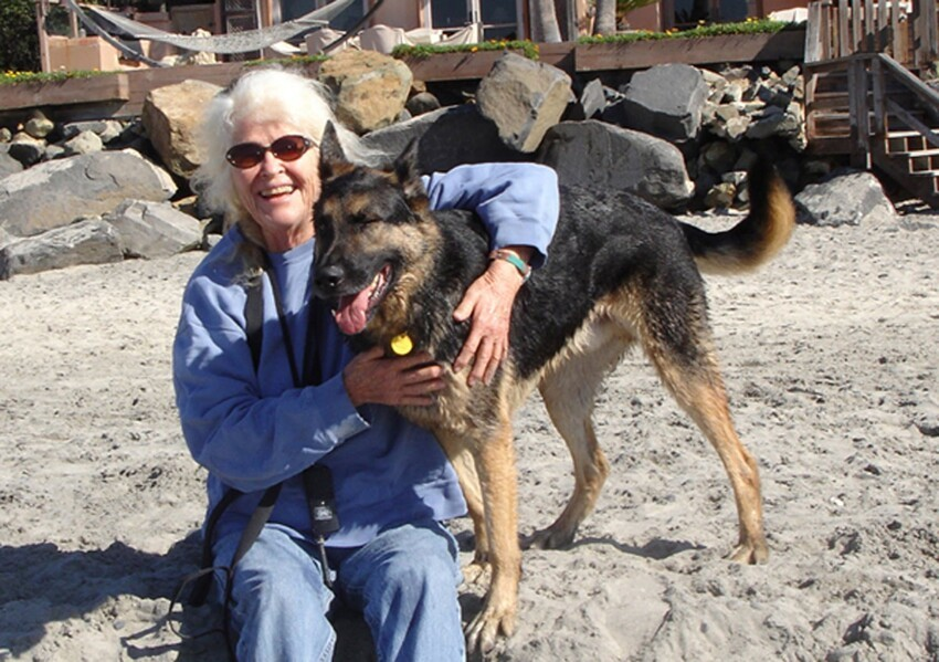 Dog Saves His 63 Year Old Owner From Suicide!
