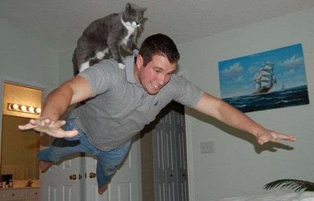 Hilarious Perfectly-Timed Photos to Help Cure the Monday Blues