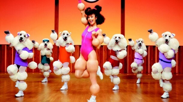 Poodle Workout