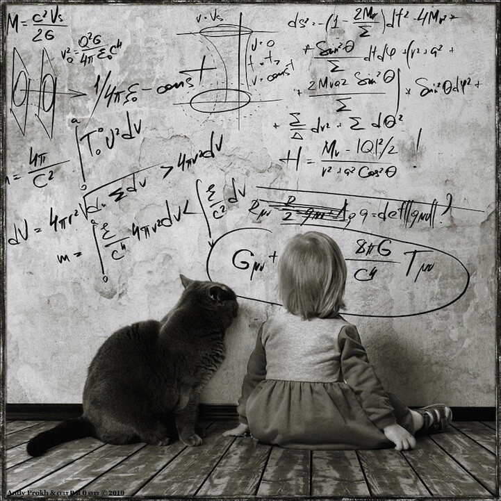 Girl and Cat Math Problem