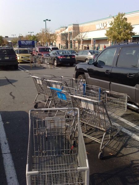 Lazy people leave shopping carts everywhere