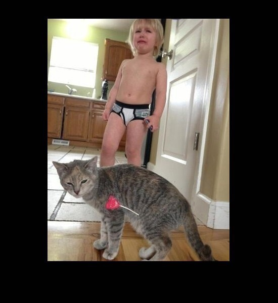 Child and Kitten both fail