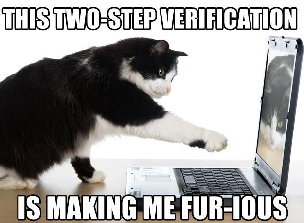 This two-step verification is making me fur-ious