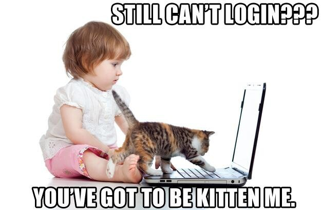 Still can't login? You've got to be kitten me.