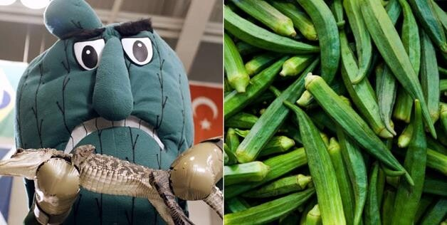 Delta State University reportedly voted to call their mascot the Fighting Okra