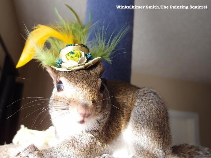 Winkelhimer Smith, A Squirrel Who Can Paint
