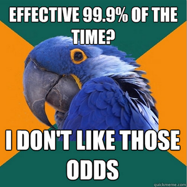 The Funniest Paranoid Parrot Memes