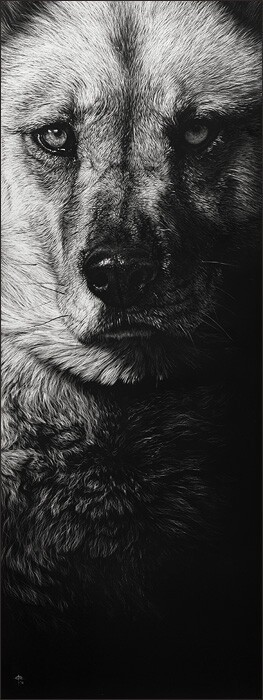 Beautiful, realistic dog portraits made by scraping ink off of clay