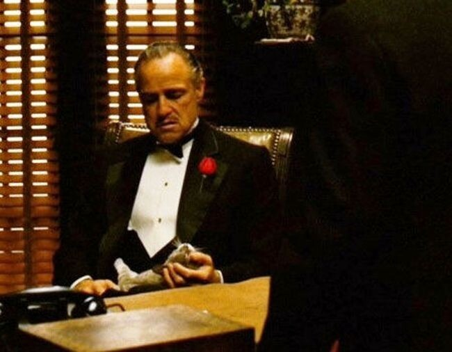 The Cat: The Godfather (1972)