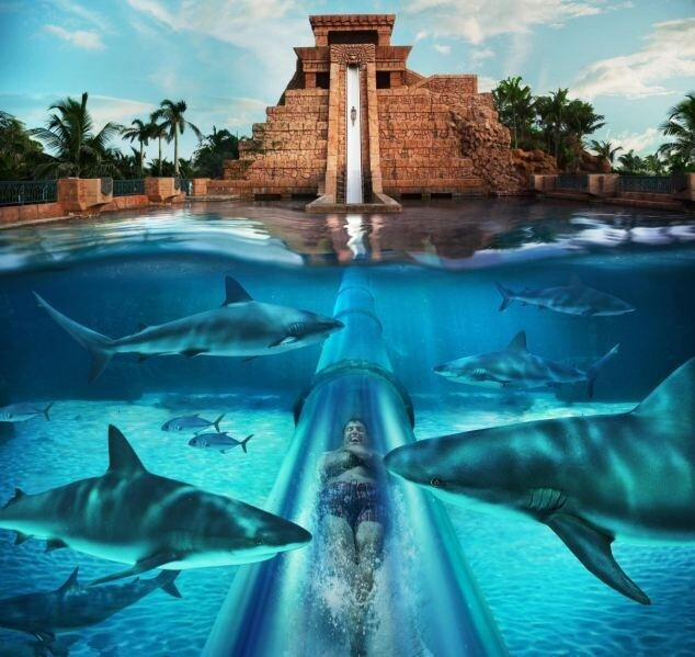 The scariest Water Slide in the world [video]