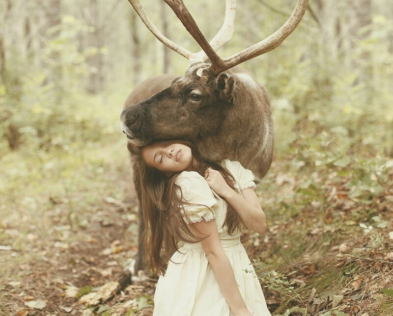 Russian Photographer Takes Images with Real Animals