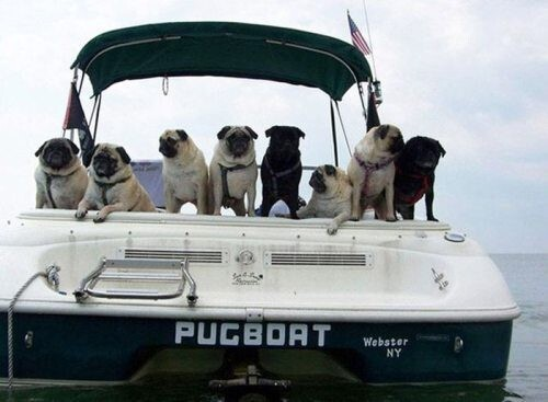 The 28 Cleverest Boat Names Of All Time.
