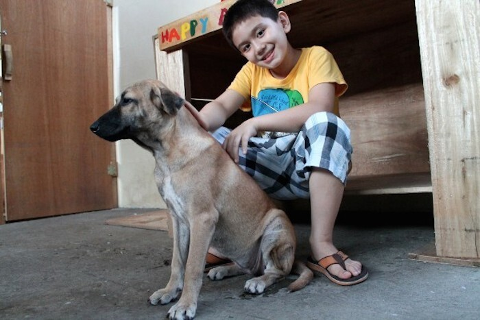 9-Year-Old Achieves Dream of Starting a No-Kill Animal Shelter