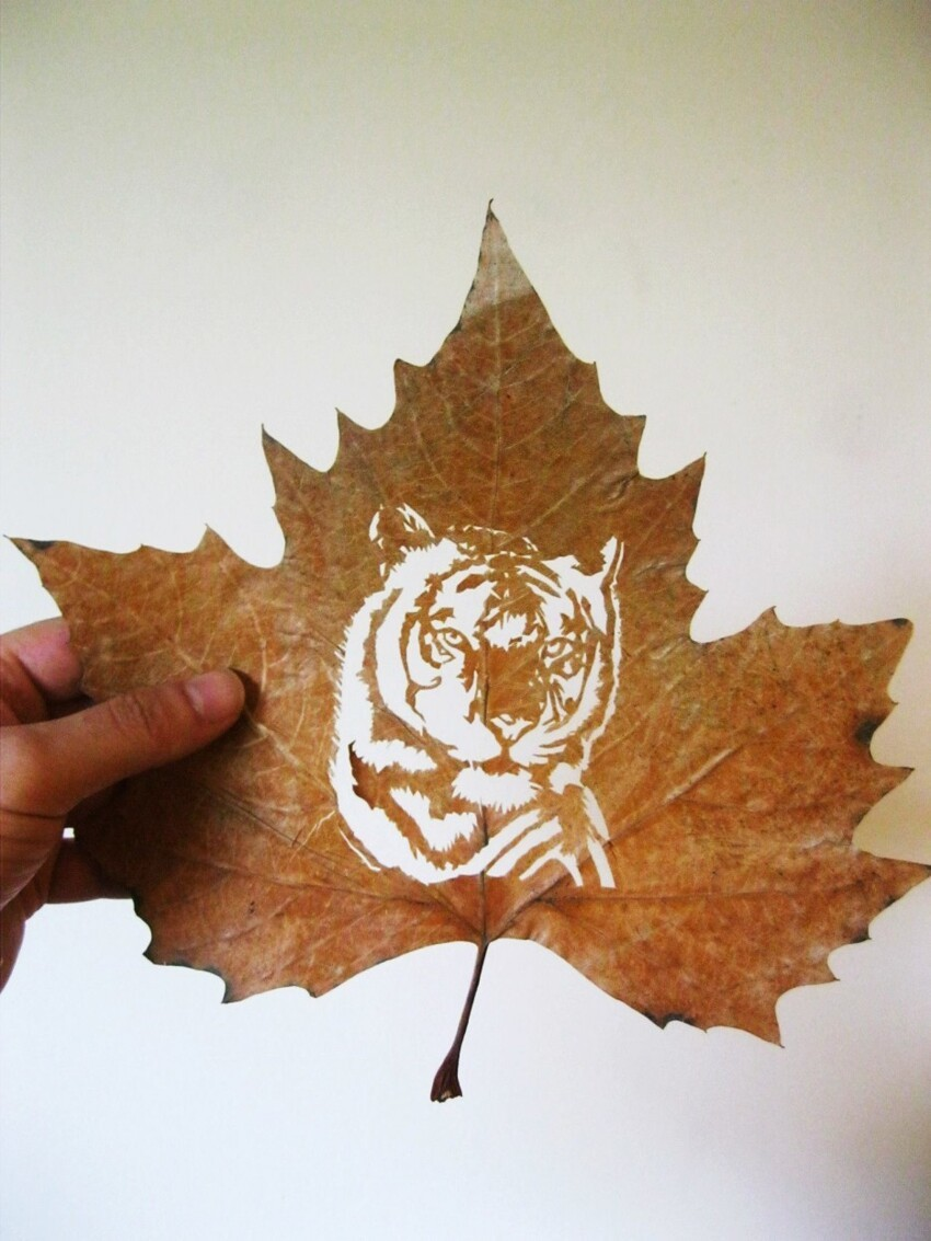 These Delicate Leaves Are Carefully Cut Into The Most Astounding Scene
