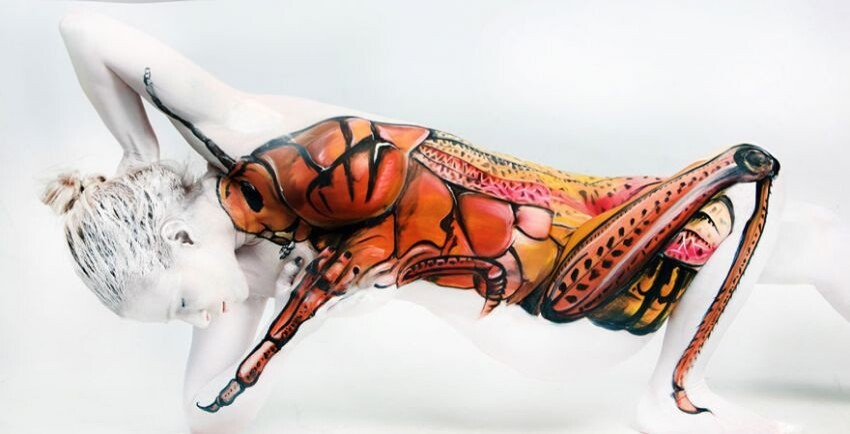 Human Figures Transformed Into Amazing Optical Illusion Body Art