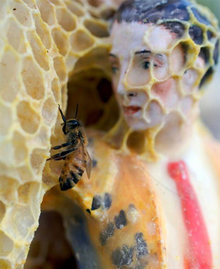 Bee Art That You Won't Believe It's Real