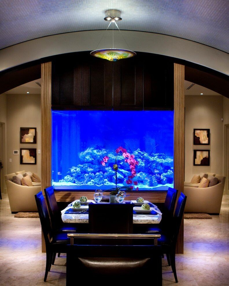 30 Fabulous Fish Tanks I Would Be Proud To Have In My Home