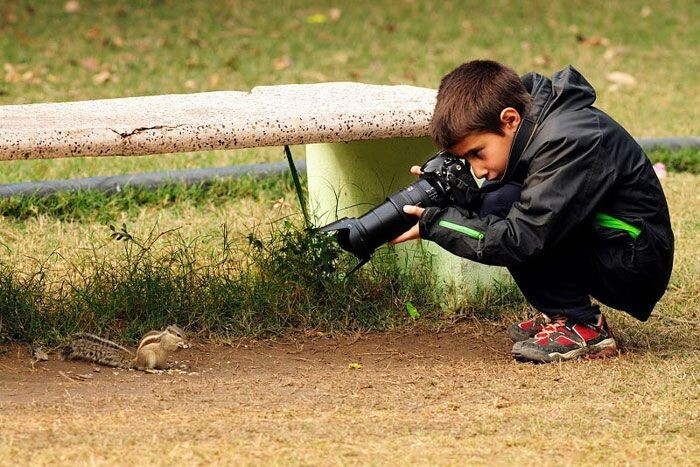 9 Year-Old Spanish Boy Becomes Young Wildlife Photographer Of The Year