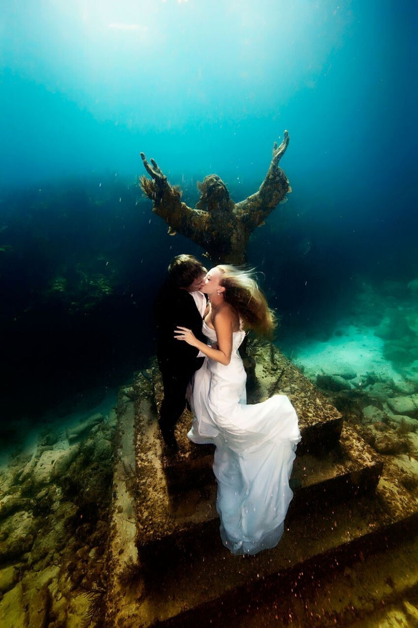 Mermaid Brides