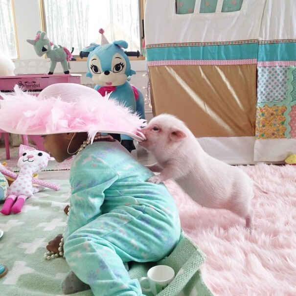 The Heartmelting Friendship Of A 2-Year-Old Girl And Her Piglet