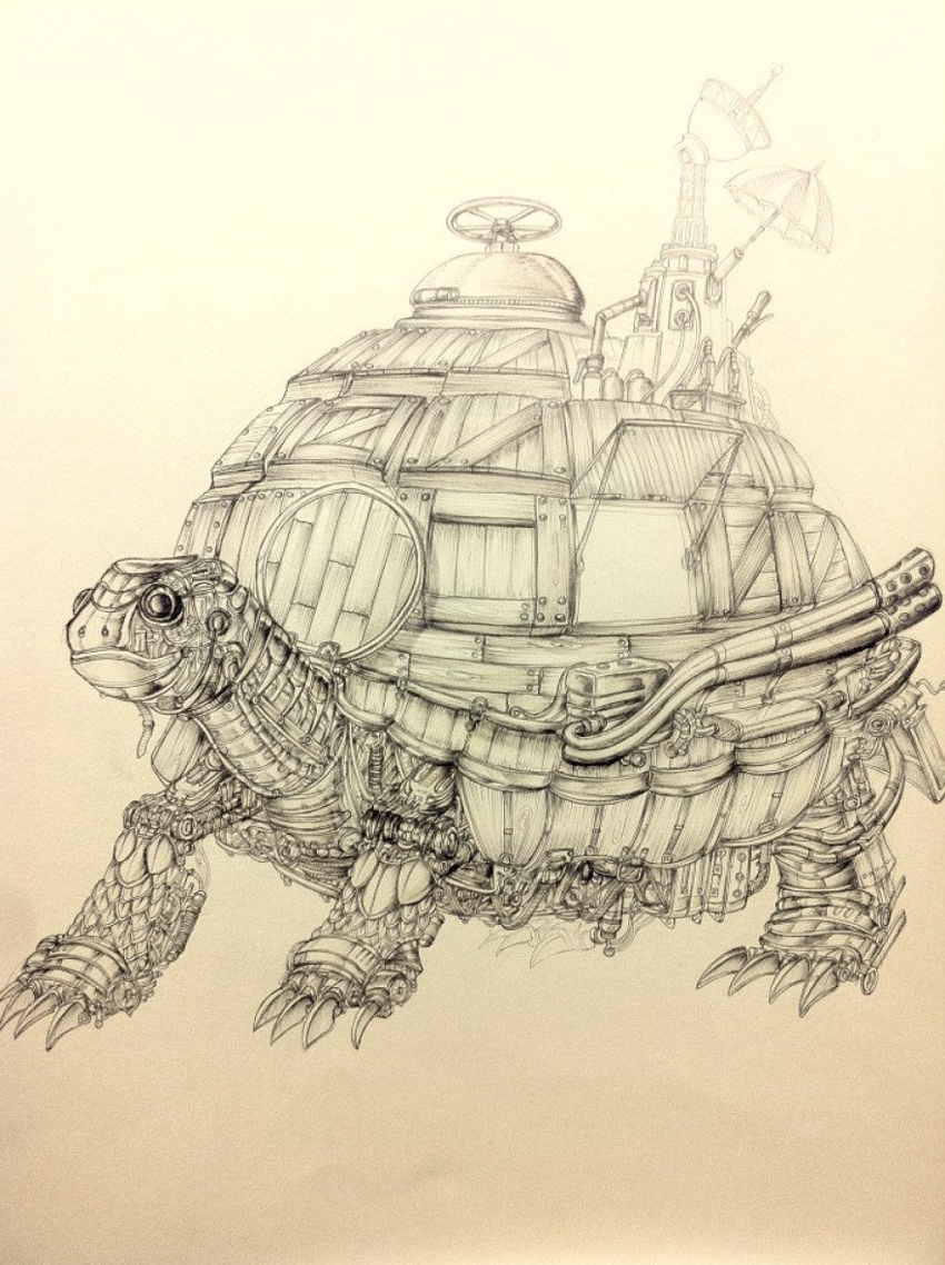Fortress Tortoise