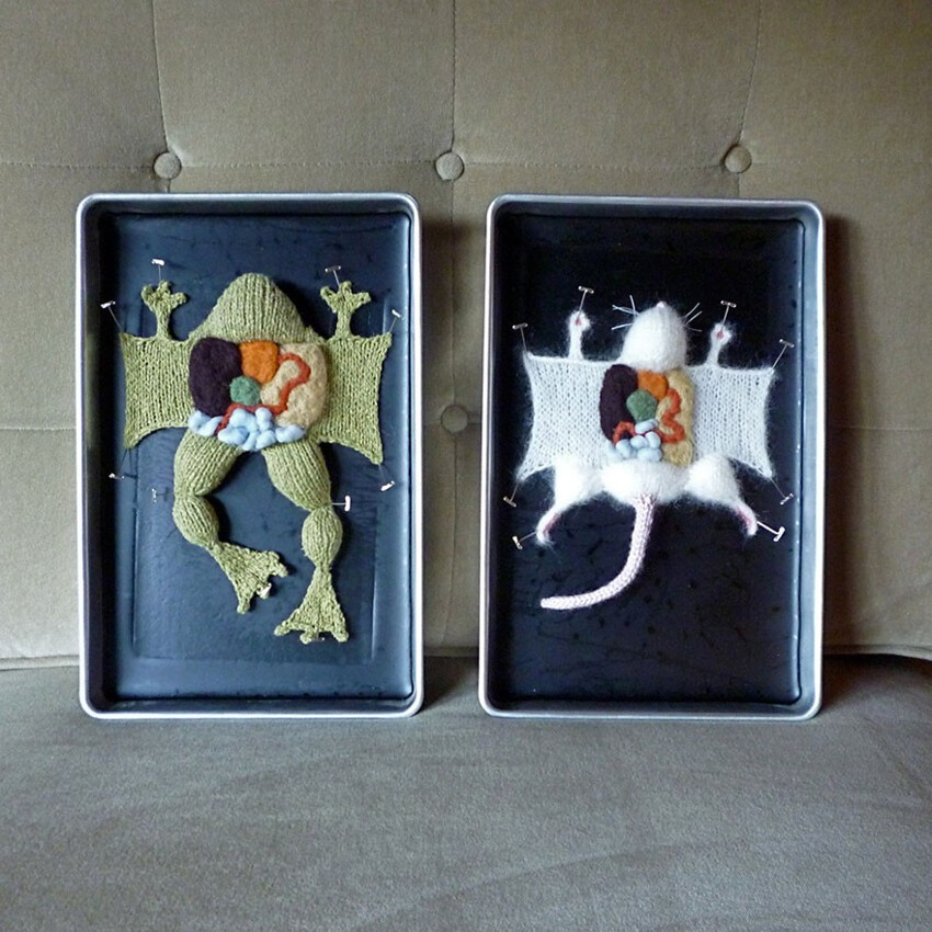 Learn Anatomy From Dissected Knit Creatures By Emily Stoneking
