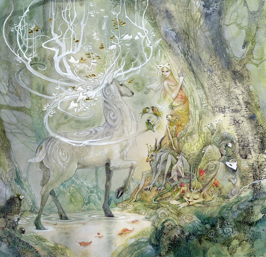 Watercolor Paintings Of Plants And Animals By Stephanie Law
