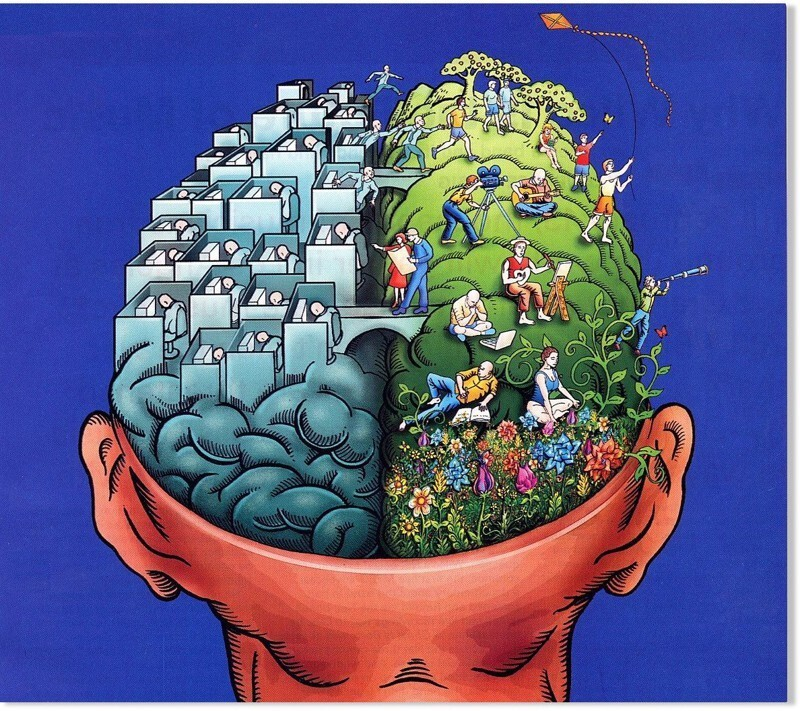 1. The human brain takes in 11 million pieces of information per second but is only aware of 40.
