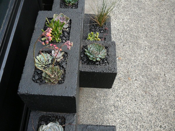 8. Spray paint cinder blocks and plant cutie succulents in em.