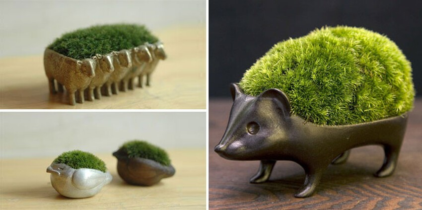 #2 Japanese Moss Planters