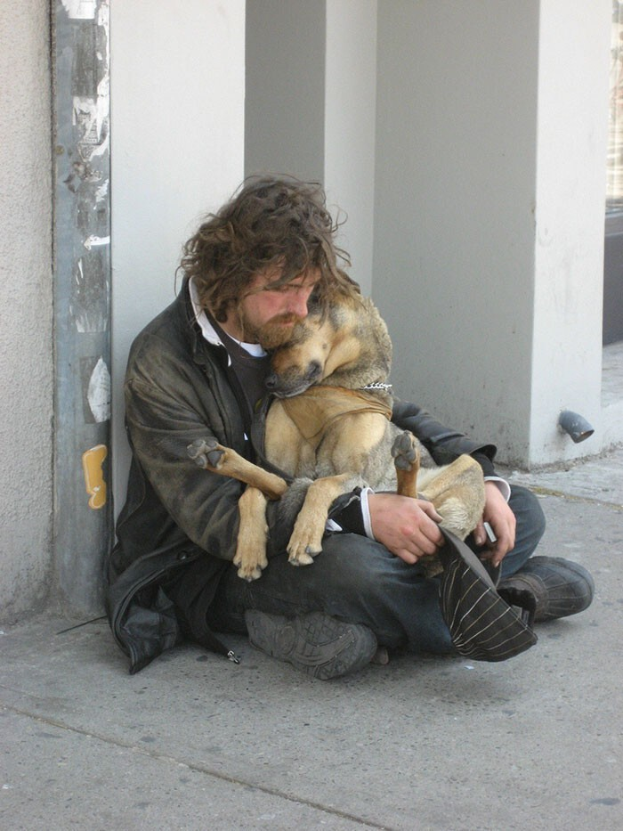 #18 Homeless Dog Who Loves To Cuddle