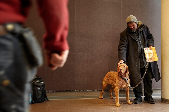 #28 This Homeless Man Takes Good Care Of Supermarket's Customers' Dogs