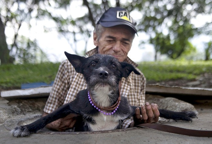 #21 Homeless Man Helps His Dog To Get Out Of The Sewer Where They Live In Medellin, Colombia
