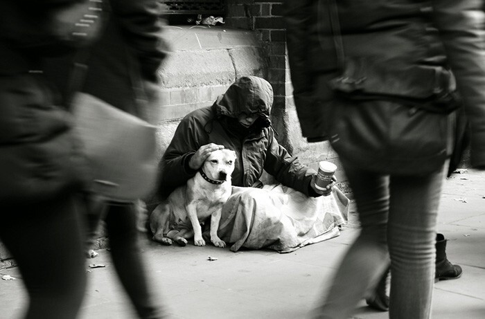 #22 Homeless Man With His Dog