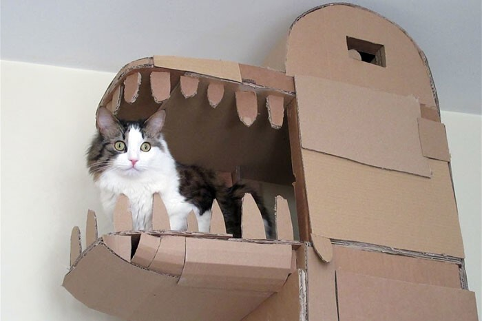 One creative guy named Sam just took cardboard cat houses to the next level