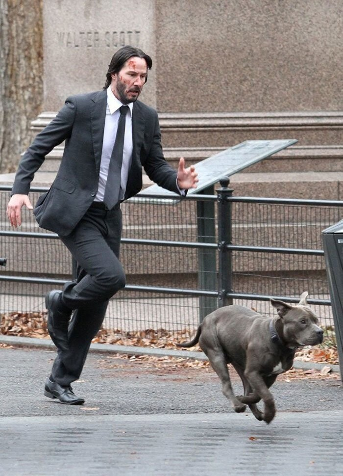 Keanu Reeves may be known as a badass in the John Wick movie